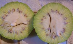 Изображение - Адамово яблоко применение настойки для суставов рецепт 2602-300x183